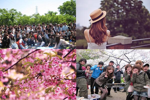 ◆4/2(土)【大阪城公園】【お花見】200名規模♪誰でも参加しやすいお花見BBQパーティー♪気軽に友達や恋人を作りに来てください♪7割の方がお一人で初参加です♪◆