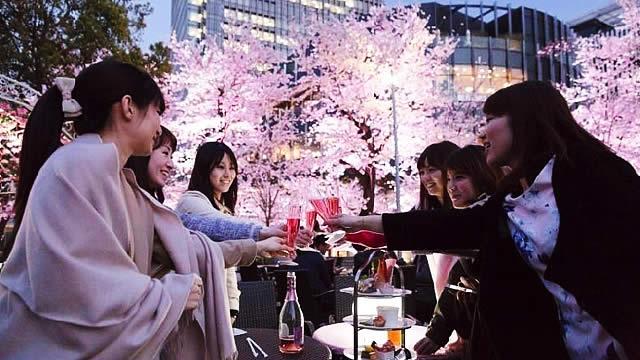 ◆4/3(日)【夜桜】【堺開催】200名規模♪誰でも参加しやすいお花見パーティー♪気軽に友達や恋人を作りに来てください♪7割の方がお一人で初参加です♪◆